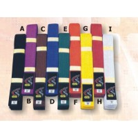 Black Single Colour Karate Belt Champion Belts