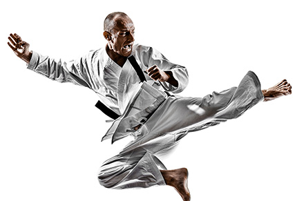 Karate Products for sale